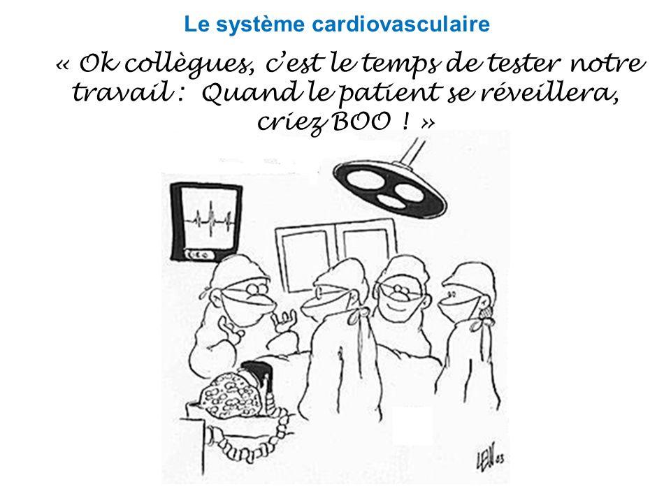 « Ok collègues, cest le temps de tester notre travail : Quand le patient se réveillera, criez BOO ! » Le système cardiovasculaire