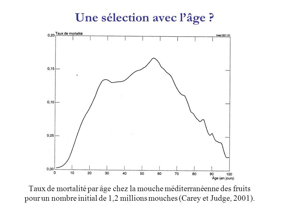 Taux de mortalité par âge chez la mouche méditerranéenne des fruits pour un nombre initial de 1,2 millions mouches (Carey et Judge, 2001). Une sélecti