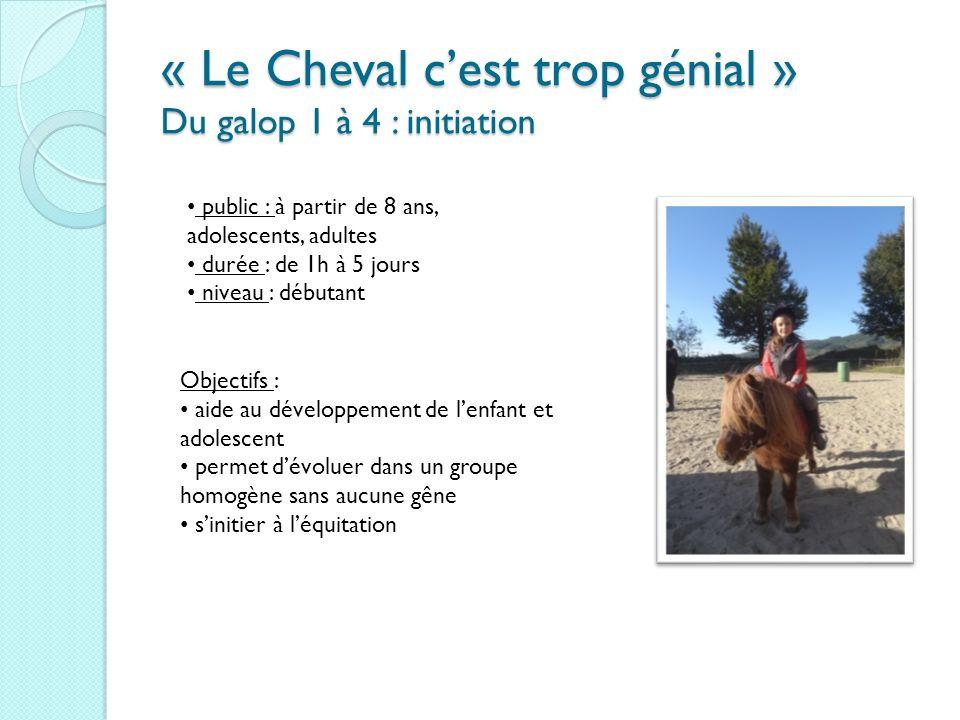 « Le Cheval cest trop génial » Du galop 1 à 4 : initiation public : à partir de 8 ans, adolescents, adultes durée : de 1h à 5 jours niveau : débutant