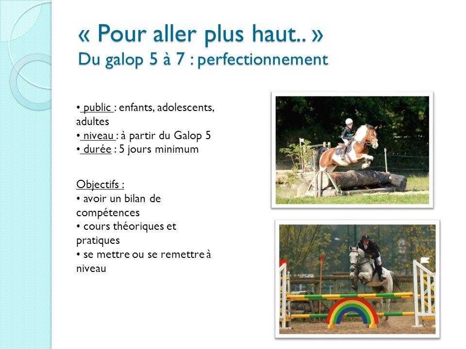 « Pour aller plus haut.. » Du galop 5 à 7 : perfectionnement public : enfants, adolescents, adultes niveau : à partir du Galop 5 durée : 5 jours minim
