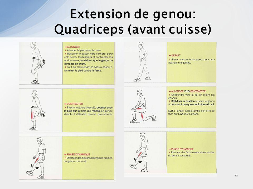 12 Extension de genou: Quadriceps (avant cuisse)