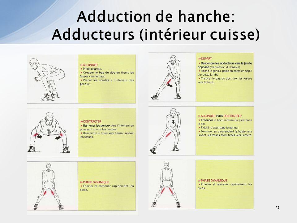 14 Abduction de hanche: Moyen fessier