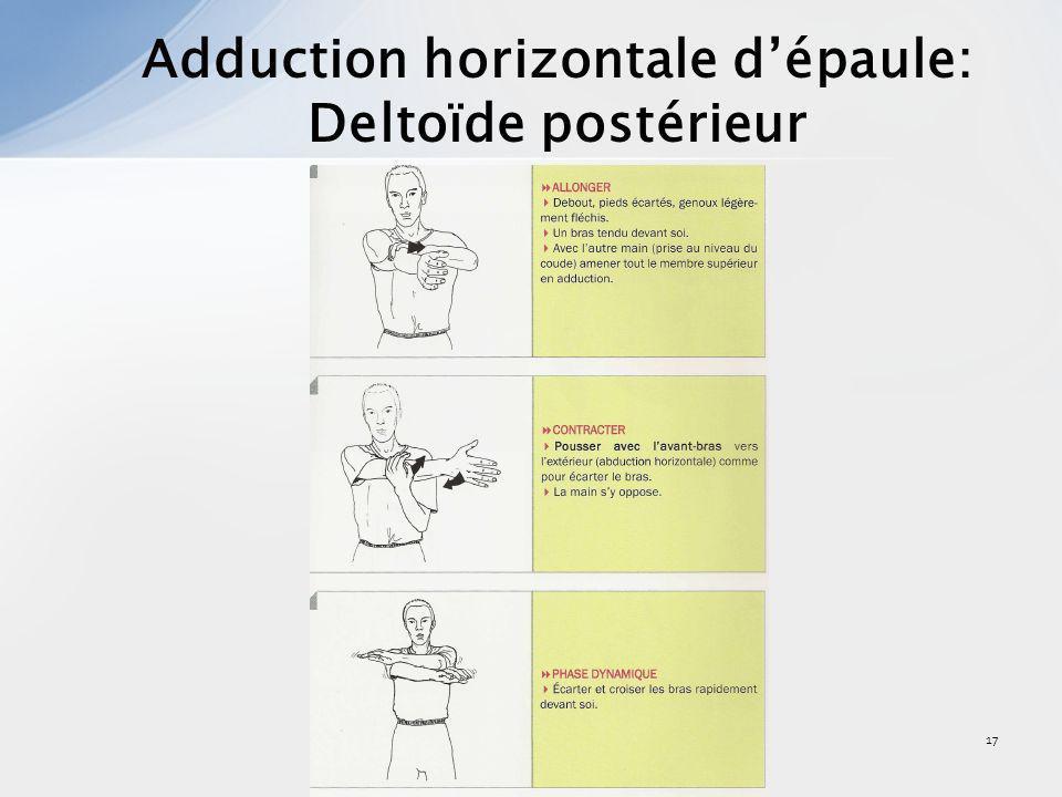 18 Extension dépaule: Delt. post, grands rond et dorsal