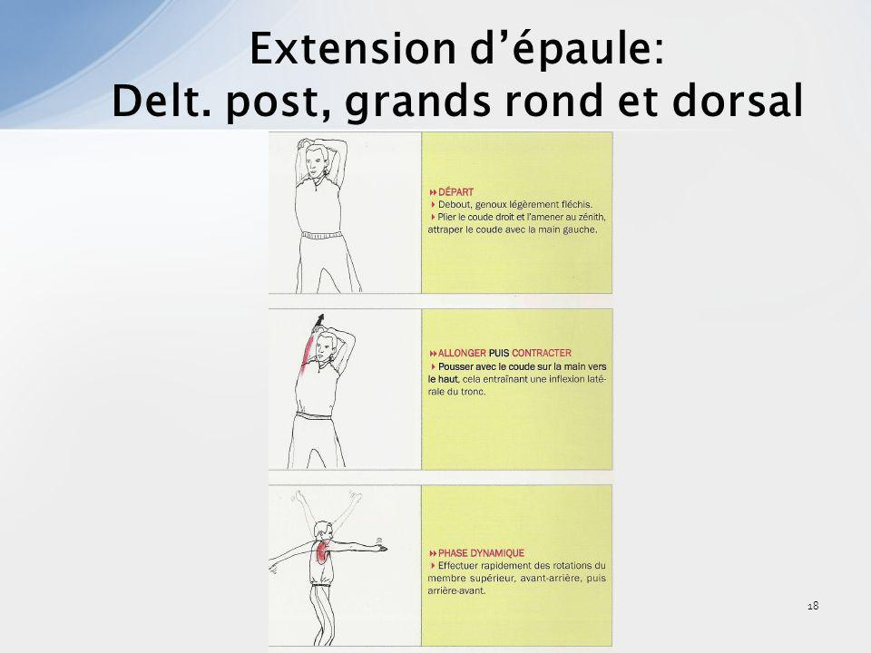 18 Extension dépaule: Delt. post, grands rond et dorsal