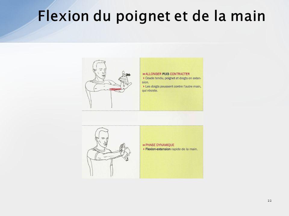 23 Extension du poignet et de la main