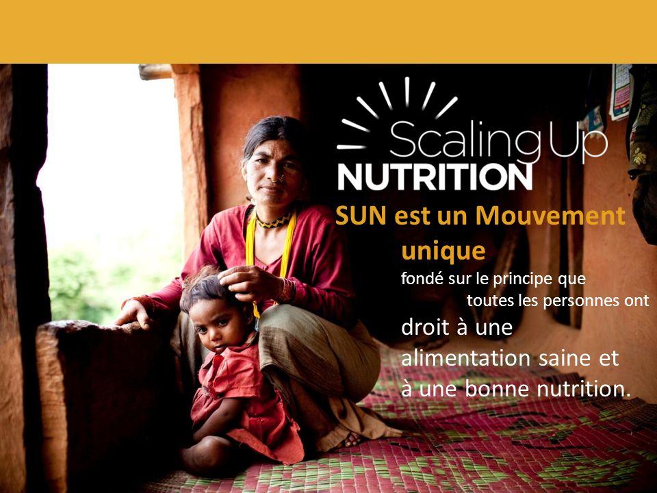 SUN réunit des responsables des gouvernements, de la société civile, des Nations-Unies, des donateurs, du secteur privé ainsi que des chercheurs qui œuvrent tous à l amélioration de la nutrition.