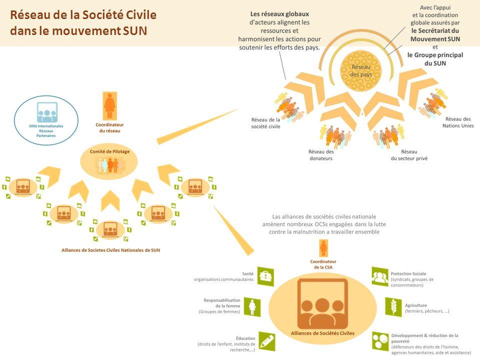 The SUN approach Réseau de la Société Civile dans le mouvement SUN