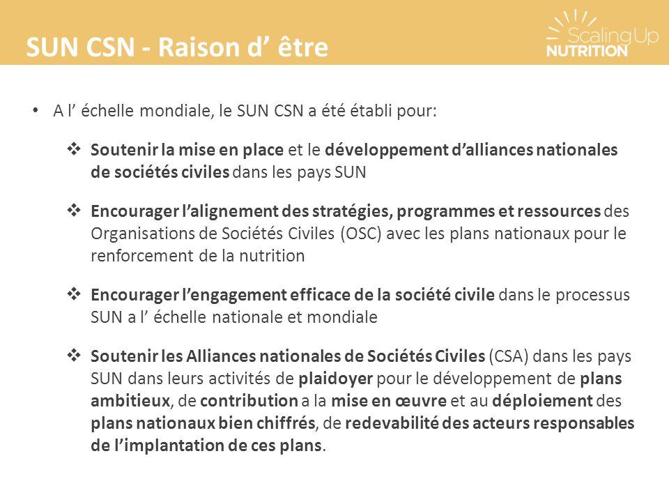 SUN CSN - Raison d être A l échelle mondiale, le SUN CSN a été établi pour: Soutenir la mise en place et le développement dalliances nationales de sociétés civiles dans les pays SUN Encourager lalignement des stratégies, programmes et ressources des Organisations de Sociétés Civiles (OSC) avec les plans nationaux pour le renforcement de la nutrition Encourager lengagement efficace de la société civile dans le processus SUN a l échelle nationale et mondiale Soutenir les Alliances nationales de Sociétés Civiles (CSA) dans les pays SUN dans leurs activités de plaidoyer pour le développement de plans ambitieux, de contribution a la mise en œuvre et au déploiement des plans nationaux bien chiffrés, de redevabilité des acteurs responsables de limplantation de ces plans.