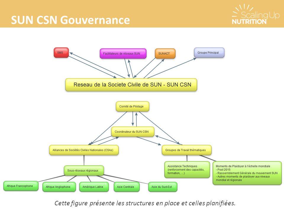 SUN CSN Gouvernance Cette figure présente les structures en place et celles planifiées.