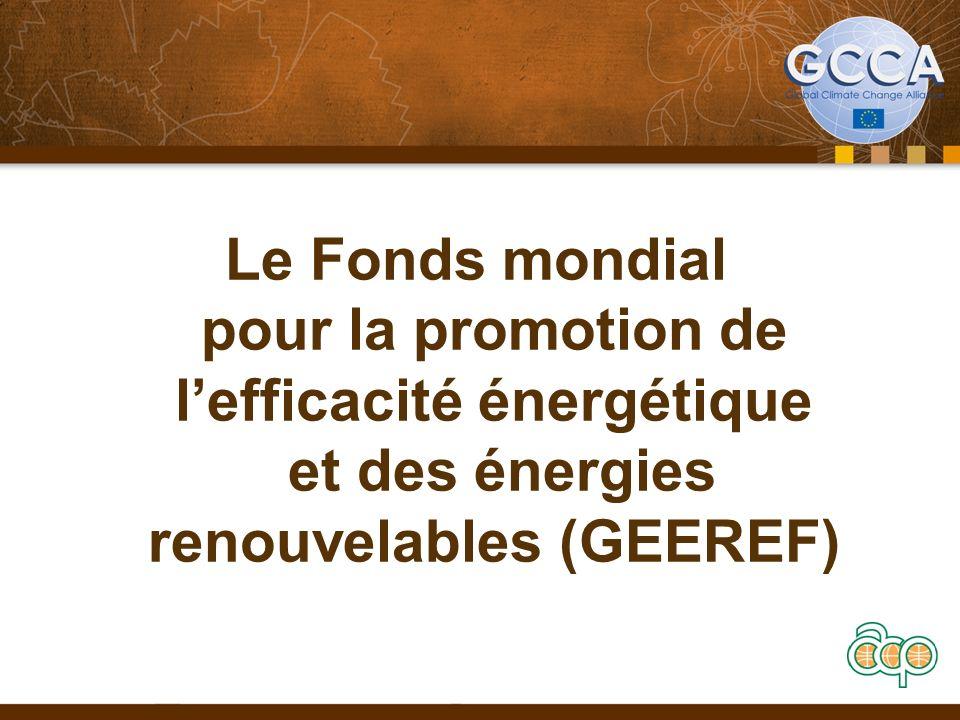 Le Fonds mondial pour la promotion de lefficacité énergétique et des énergies renouvelables (GEEREF)