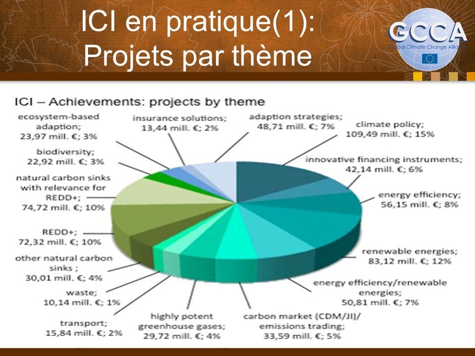 ICI en pratique(1): Projets par thème 32