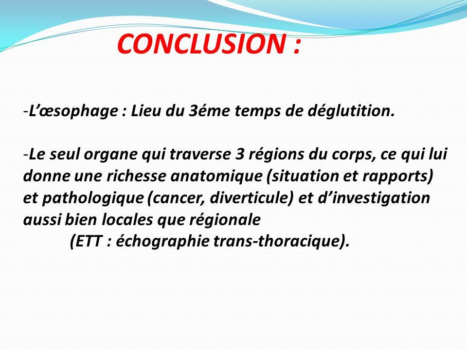 CONCLUSION : -Lœsophage : Lieu du 3éme temps de déglutition. -Le seul organe qui traverse 3 régions du corps, ce qui lui donne une richesse anatomique
