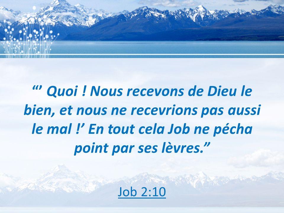 Quoi ! Nous recevons de Dieu le bien, et nous ne recevrions pas aussi le mal ! En tout cela Job ne pécha point par ses lèvres. Job 2:10