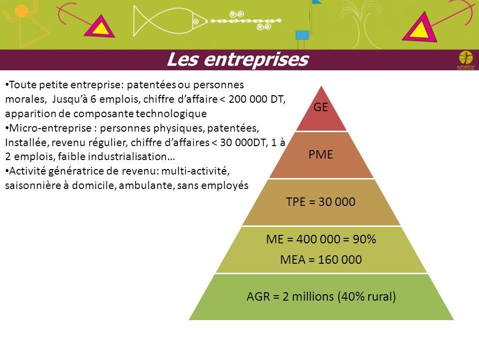 Les entreprises GE PME TPE = 30 000 ME = 400 000 = 90% MEA = 160 000 AGR = 2 millions (40% rural) Toute petite entreprise: patentées ou personnes mora