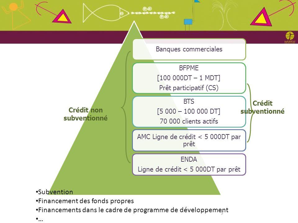 3 Banques commerciales BFPME [100 000DT – 1 MDT] Prêt participatif (CS) BTS [5 000 – 100 000 DT] 70 000 clients actifs AMC Ligne de crédit < 5 000DT p