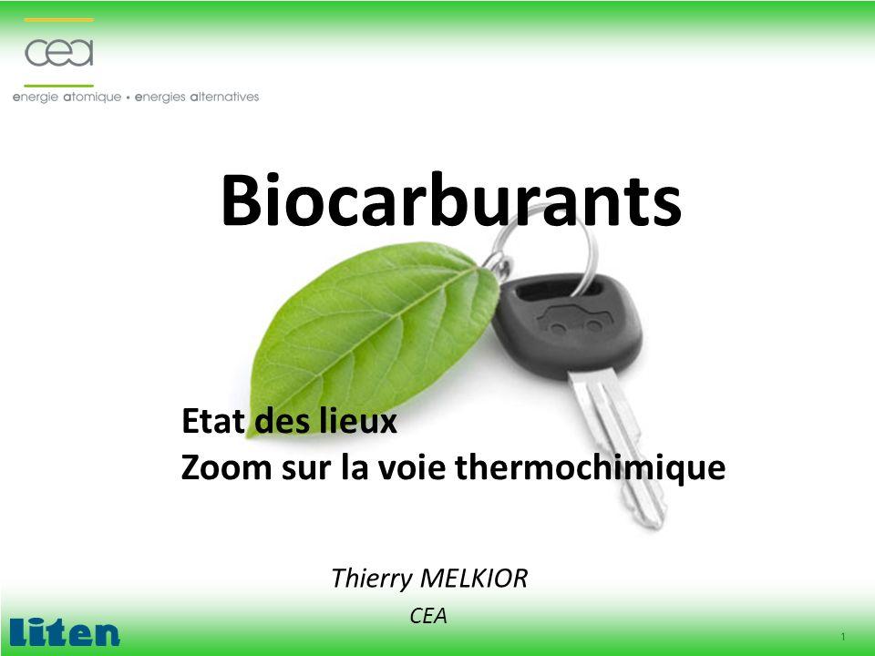 1 Biocarburants Thierry MELKIOR CEA Etat des lieux Zoom sur la voie thermochimique