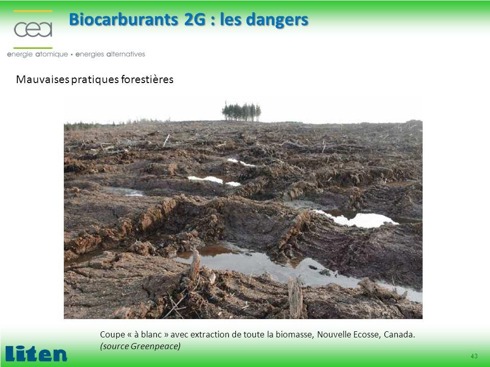 43 Mauvaises pratiques forestières Coupe « à blanc » avec extraction de toute la biomasse, Nouvelle Ecosse, Canada. (source Greenpeace) Biocarburants