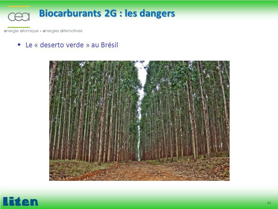 44 Le « deserto verde » au Brésil Biocarburants 2G : les dangers