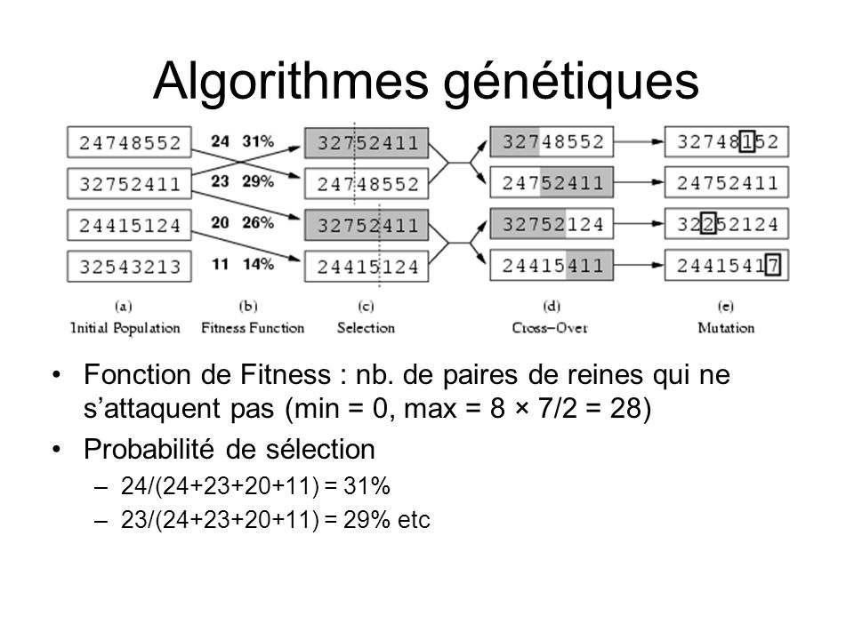 Algorithmes génétiques Fonction de Fitness : nb. de paires de reines qui ne sattaquent pas (min = 0, max = 8 × 7/2 = 28) Probabilité de sélection –24/