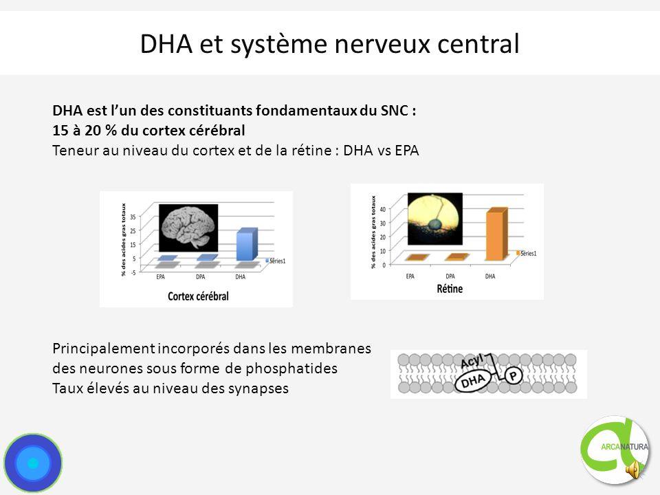 Omega 3 : métabolisme Compétition possible entre oméga 3 et oméga 6: Utilisation des mêmes enzymes lors du métabolisme Conversion limitée ALA- EPA ou DHA: la source de DHA doit venir dun apport externe
