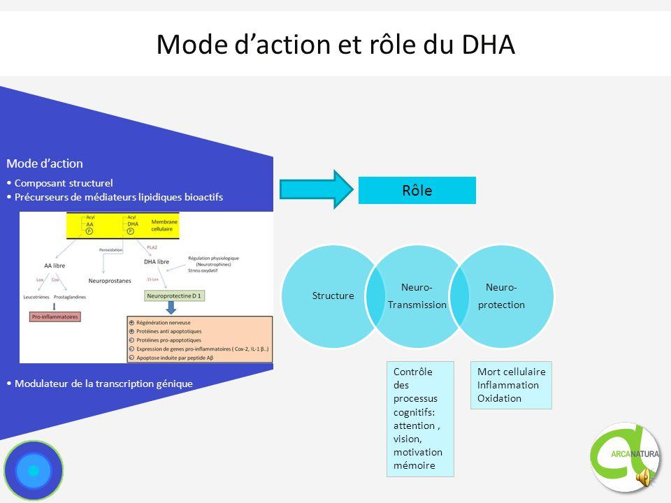 Source de DHA pour le SNC : rôle critique de lapport alimentaire direct de DHA