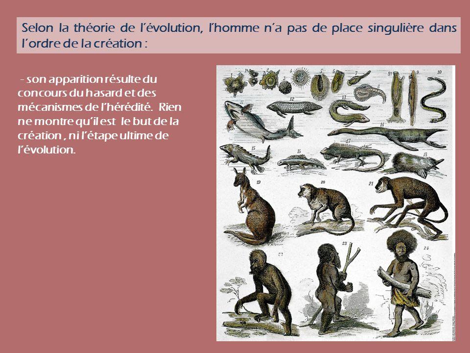 Selon la théorie de lévolution, lhomme na pas de place singulière dans lordre de la création : - son apparition résulte du concours du hasard et des m