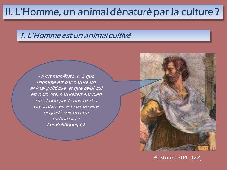 II. LHomme, un animal dénaturé par la culture ? 1. LHomme est un animal cultivé « Il est manifeste, (…), que l'homme est par nature un animal politiqu