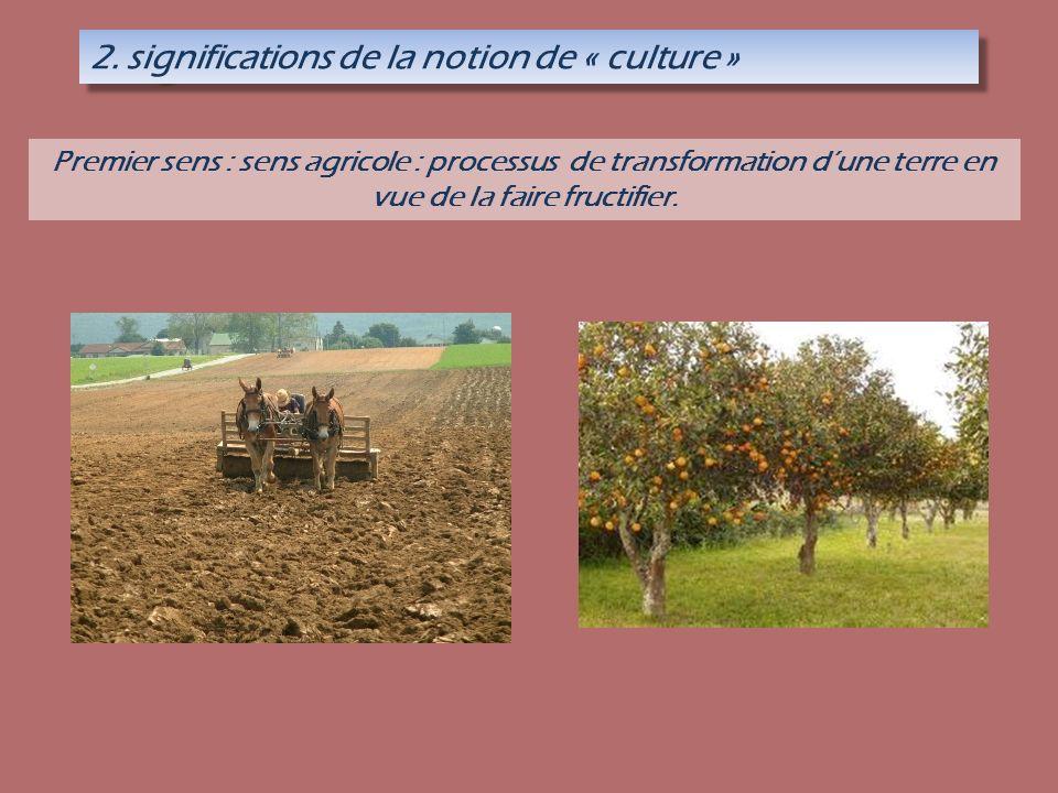 2. significations de la notion de « culture » Premier sens : sens agricole : processus de transformation dune terre en vue de la faire fructifier.