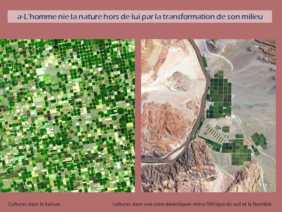 a-Lhomme nie la nature hors de lui par la transformation de son milieu Cultures dans le Kansas cultures dans une zone désertiques entre lAfrique du su