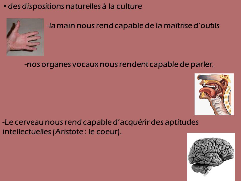 des dispositions naturelles à la culture -la main nous rend capable de la maîtrise doutils -nos organes vocaux nous rendent capable de parler. -Le cer