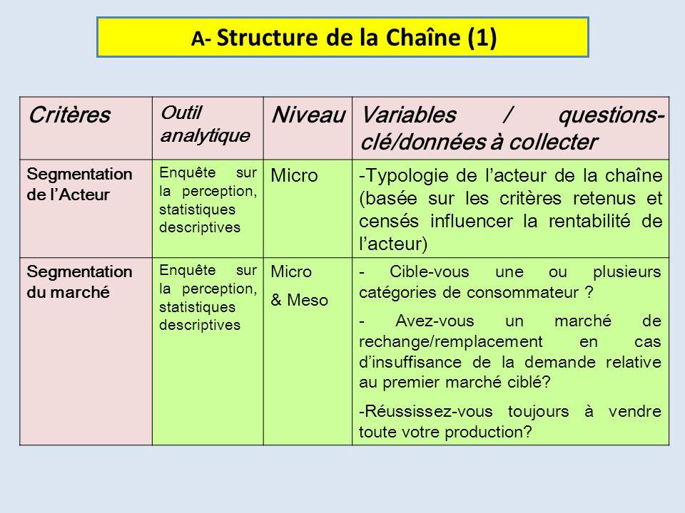 Critères Outil analytique NiveauVariables / questions- clé/données à collecter Segmentation de lActeur Enquête sur la perception, statistiques descrip