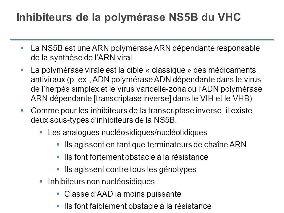 Inhibiteurs de la polymérase NS5B du VHC La NS5B est une ARN polymérase ARN dépendante responsable de la synthèse de lARN viral La polymérase virale e