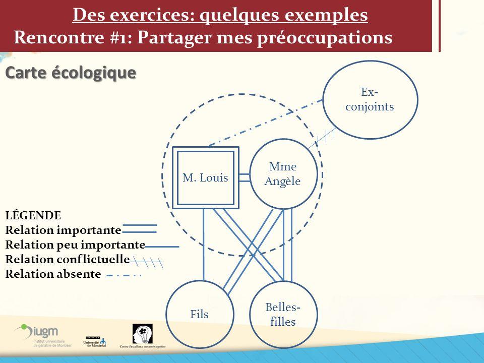 Des exercices: quelques exemples Rencontre #1: Partager mes préoccupations Carte écologique M. Louis Mme Angèle Fils Belles- filles Ex- conjoints LÉGE
