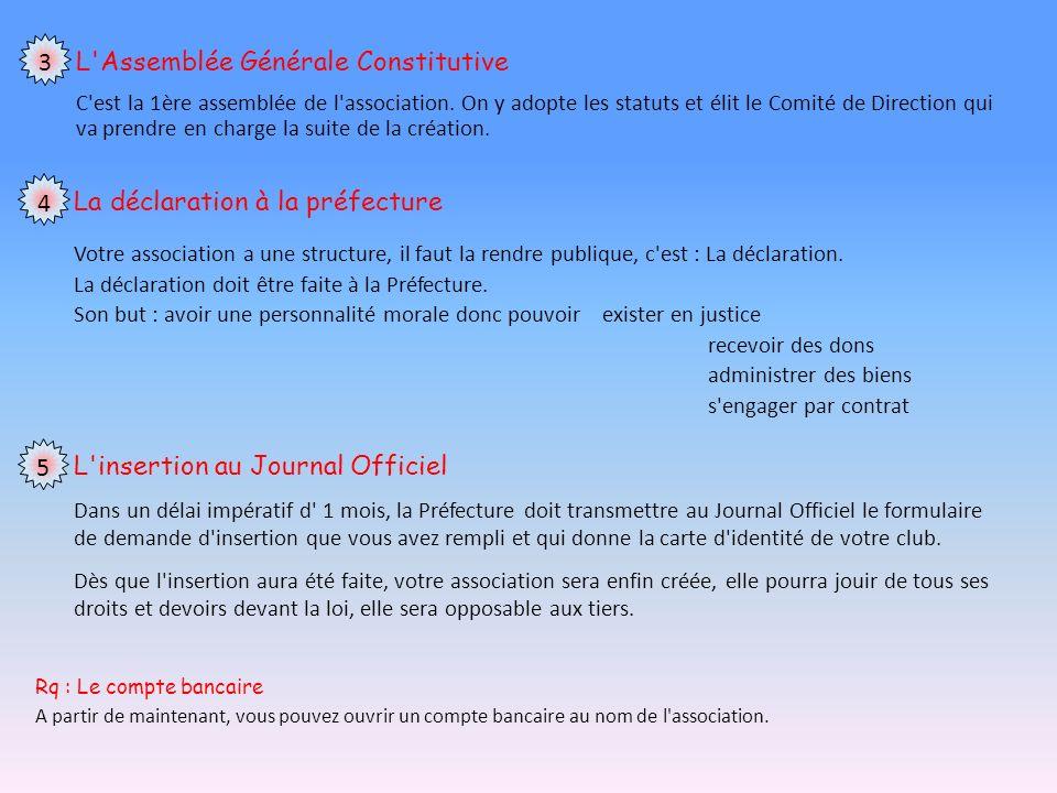 L'Assemblée Générale Constitutive C'est la 1ère assemblée de l'association. On y adopte les statuts et élit le Comité de Direction qui va prendre en c