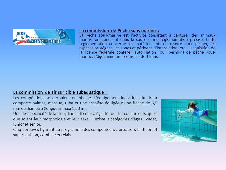 La commission de Tir sur cible subaquatique : Les compétitions se déroulent en piscine.