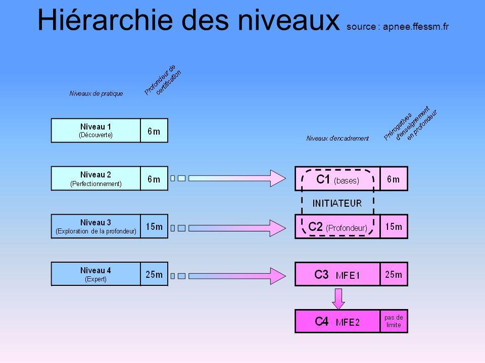 Hiérarchie des niveaux source : apnee.ffessm.fr