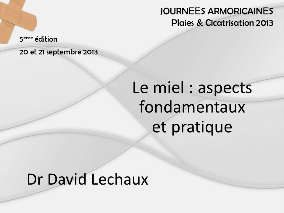 Le miel : aspects fondamentaux et pratique Dr David Lechaux JOURN EE S ARMORICAIN E S Plaies & Cicatrisation 2013 5 ème édition 20 et 21 septembre 2013