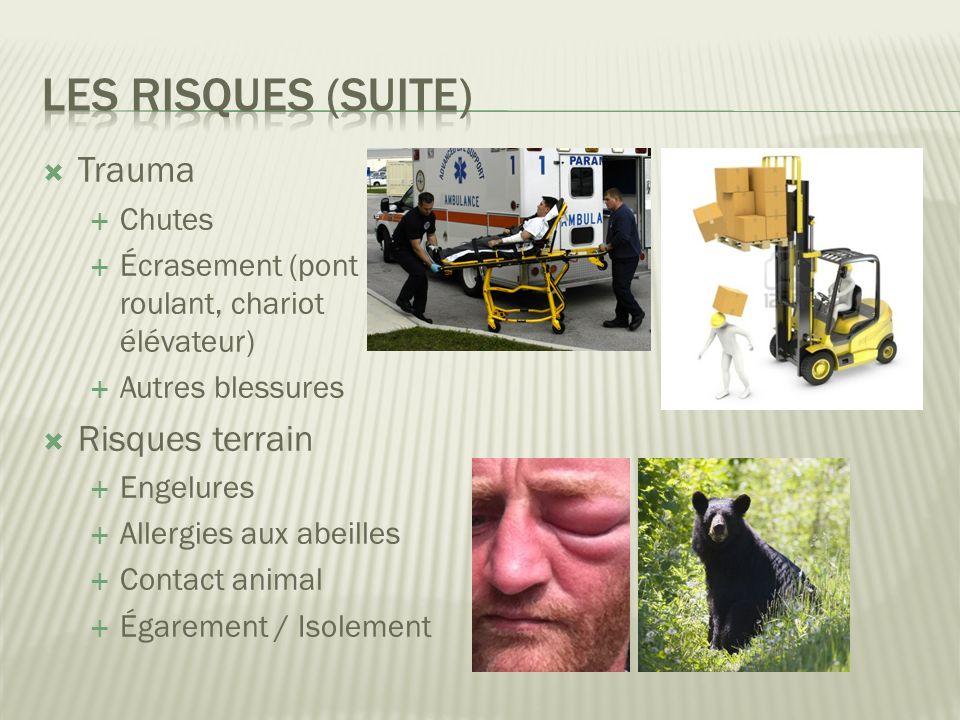 Trauma Chutes Écrasement (pont roulant, chariot élévateur) Autres blessures Risques terrain Engelures Allergies aux abeilles Contact animal Égarement / Isolement