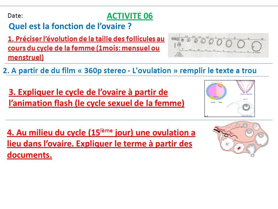 Date: ACTIVITE 06 Quel est la fonction de lovaire ? 1. Préciser lévolution de la taille des follicules au cours du cycle de la femme (1mois: mensuel o