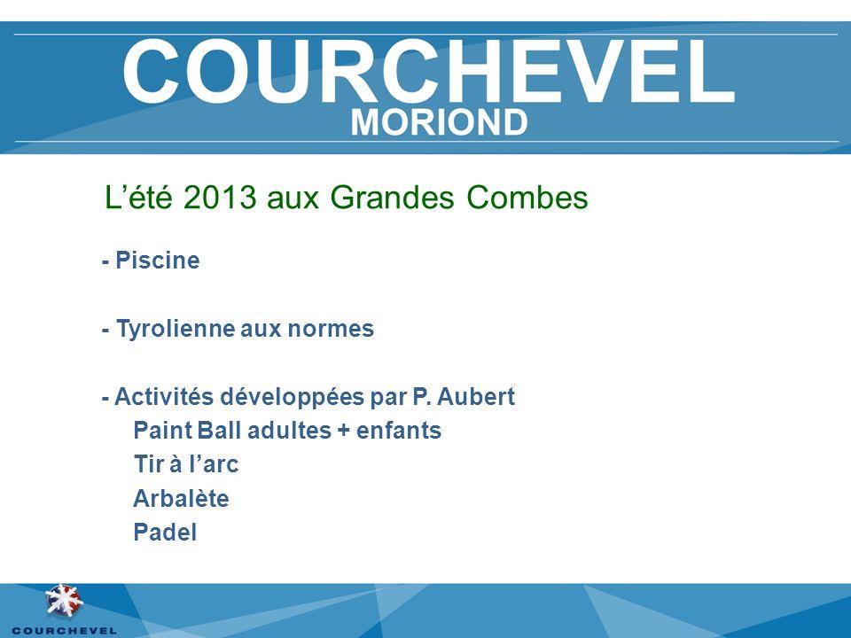 Lété 2013 aux Grandes Combes - Piscine - Tyrolienne aux normes - Activités développées par P. Aubert Paint Ball adultes + enfants Tir à larc Arbalète
