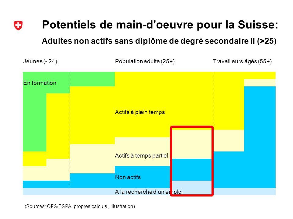Potentiels de main-d oeuvre pour la Suisse: (Sources: OFS/ESPA, propres calculs, illustration) Adultes non actifs sans diplôme de degré secondaire II (>25) Jeunes (- 24)Population adulte (25+)Travailleurs âgés (55+) En formation Actifs à plein temps Actifs à temps partiel Non actifs A la recherche d un emploi