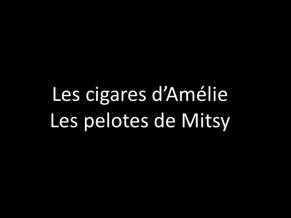 Les cigares dAmélie Les pelotes de Mitsy