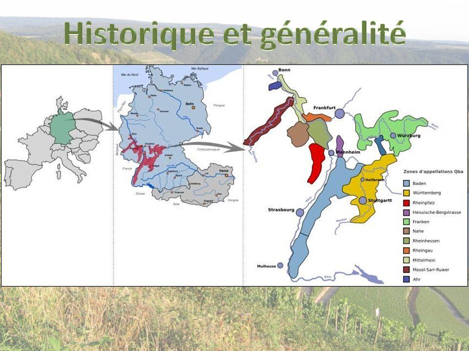 Le vignoble allemand est au moins aussi ancien que le vignoble français, ce n est pas une certitude mais les romains auraient foulé ce sol dès 100 av J.C.