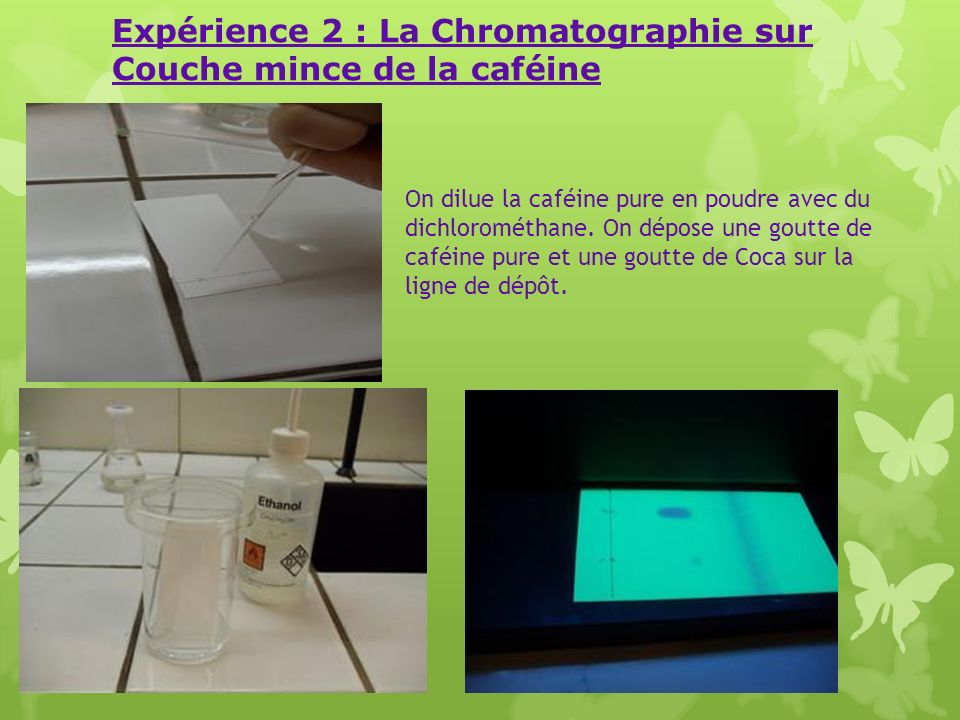 Expérience 2 : La Chromatographie sur Couche mince de la caféine On dilue la caféine pure en poudre avec du dichlorométhane. On dépose une goutte de c