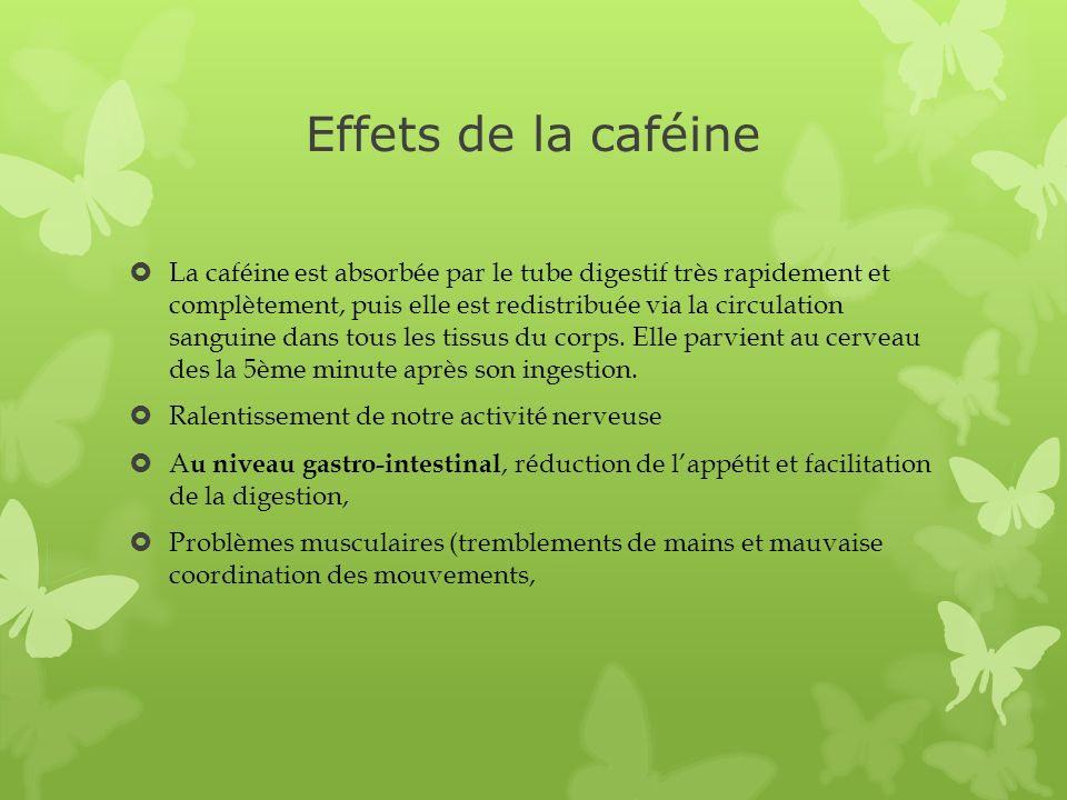 Effets de la caféine La caféine est absorbée par le tube digestif très rapidement et complètement, puis elle est redistribuée via la circulation sangu