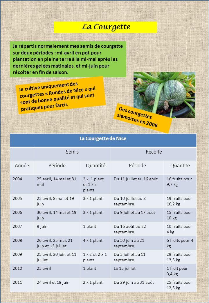 La Courgette Je répartis normalement mes semis de courgette sur deux périodes : mi-avril en pot pour plantation en pleine terre à la mi-mai après les dernières gelées matinales, et mi-juin pour récolter en fin de saison.