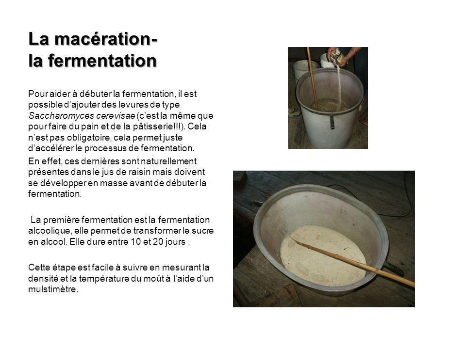 Pour aider à débuter la fermentation, il est possible dajouter des levures de type Saccharomyces cerevisae (cest la même que pour faire du pain et de la pâtisserie!!!).