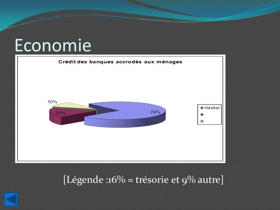 Economie [Légende :16% = trésorie et 9% autre]