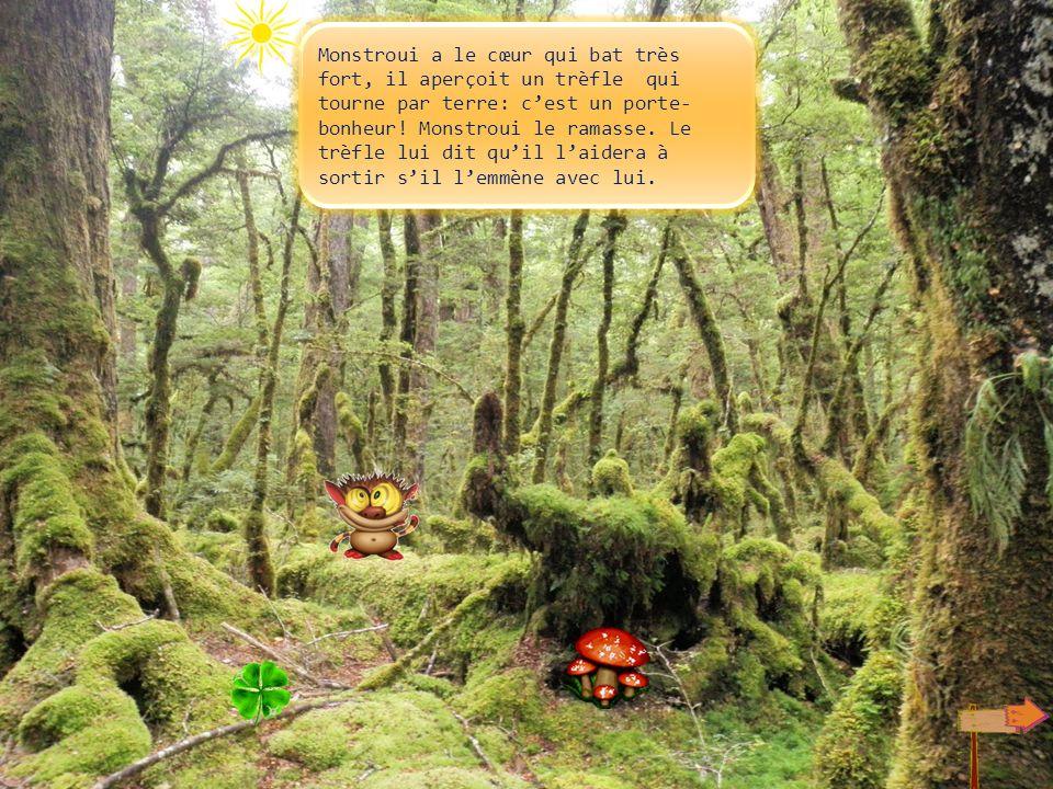 Même les arbres sont fous. Ils tournent comme des toupies, ça donne le vertige à Monstroui qui ferme les yeux! Je ne peux pas les regarder.
