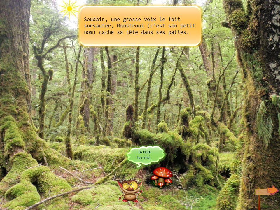 Un petit monstre craintif avance sur un chemin dans la forêt. Il est fatigué car il a marché longtemps, il est perdu. Jai peur